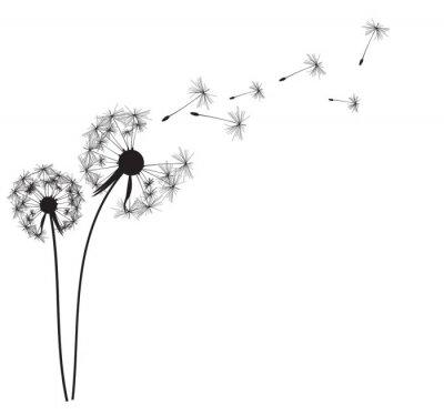 Väggdekor Abstrakt Dandelion bakgrund vektor illustration
