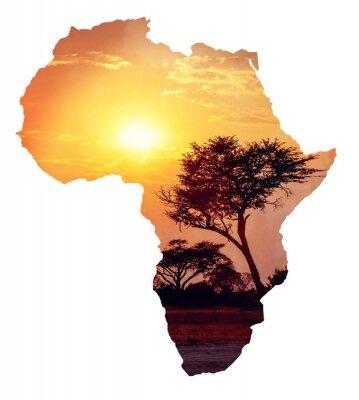 Väggdekor Afrikansk solnedgång med akacia, Karta över Afrika koncept