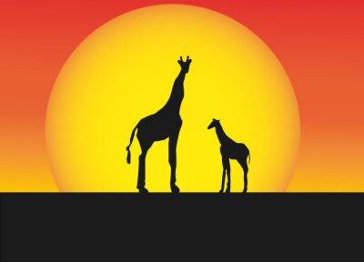 Väggdekor Afrikanska giraffer i silhuett landskap