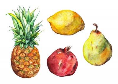 Väggdekor Akvarell ananas granatäpple citron päron frukt uppsättning isolerade