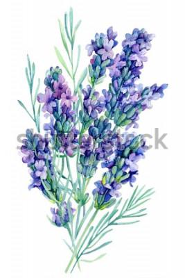 Väggdekor akvarell bukett lavendel blommor illustration på isolerad vit bakgrund