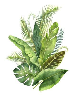 Väggdekor Akvarell bukett tropiska löv och grenar isolerade på vit bakgrund.