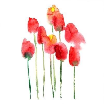 Väggdekor Akvarell handmålade röda och gula tulpaner