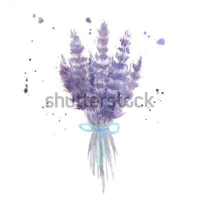 Väggdekor Akvarell lavendelbukett. Skiss lavendelblommor med blått band och akvarellstänk. Isolerad vektorillustration