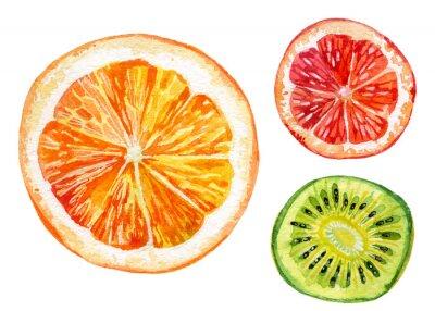 Väggdekor Akvarell uppsättning färsk apelsin, kiwi och grapefrukt