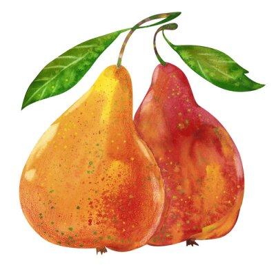 Väggdekor Akvarell välsmakande päron räcka den utdragna illustrationen