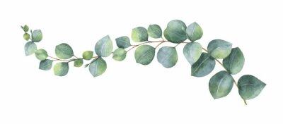 Väggdekor Akvarell vektor krans med gröna eucalyptus löv och grenar.