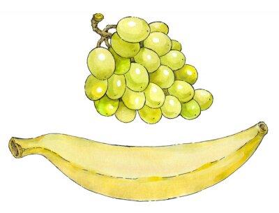 Väggdekor Akvarellmålning av en uppsättning av frukt: vindruvor och bananer