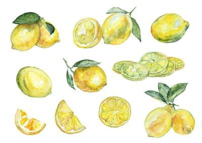 Väggdekor Akvarellmålning. Tappning uppsättning citroner.