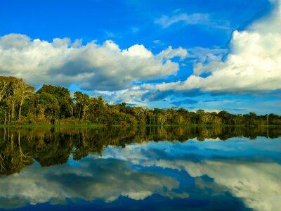 Väggdekor Amazonfloden