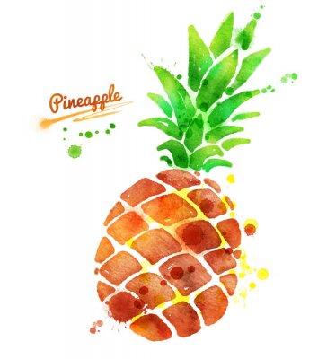 Väggdekor Ananas med färgstänk.