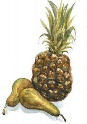 Väggdekor Ananas och päron på en vit bakgrund. akvarellmålning