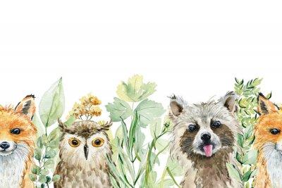 Väggdekor Animals watercolor illustration