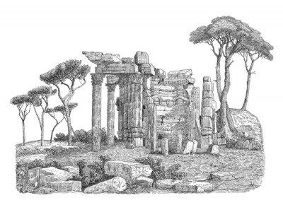 Väggdekor Antika grekiska kolumn illustration