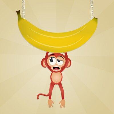 Väggdekor apa med banan