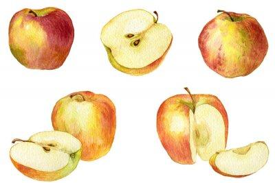 Väggdekor Apple drar vid vattenfärg