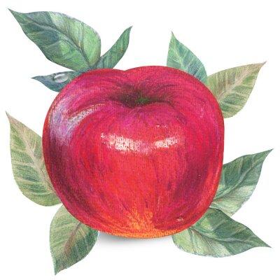 Väggdekor Apple på vit med klippning