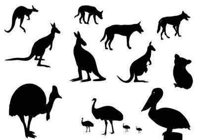 Väggdekor Australiensiska djur silhuett