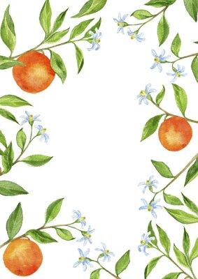 Väggdekor bakgrund med frukt trädgrenar, blommor, blad och apelsiner