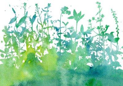 Väggdekor Bakgrund med teckning örter och blommor