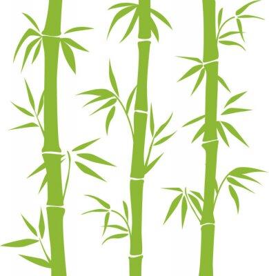 Väggdekor Bambu
