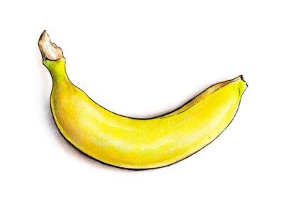 Väggdekor Banana isolerad på vit bakgrund. Vattenfärgillustration. tropiska frukter