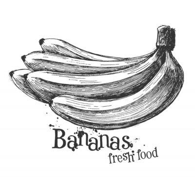 Väggdekor bananer på en vit bakgrund. skiss