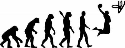 Väggdekor basket Evolution