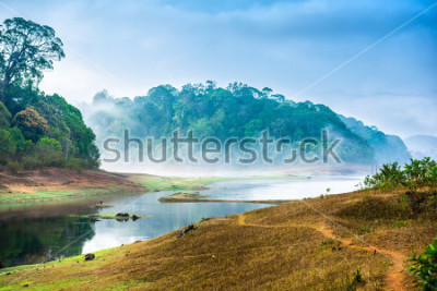 Väggdekor beautiful landscape with wild forest and river with fog in India. Periyar National Park, Kerala, India