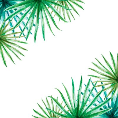 Väggdekor Beautiful tropical leaves frame. Palm. Watercolor painting. Exotic plant. Natural print. Sketch drawing. Botanical composition. Greeting card. Painted background. Hand drawn illustration.