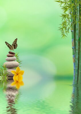 Väggdekor begrepp natur détente, bien-être, avkoppling