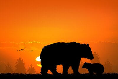 Väggdekor björn och barn björn i skogen