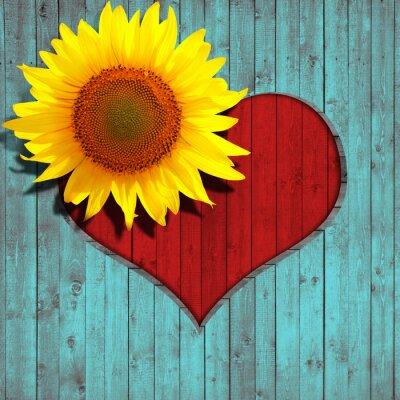 Väggdekor blomma solros hjärta och turkos trä bakgrund