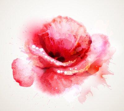 Väggdekor Blommande röd vallmo