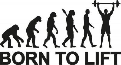 Väggdekor Born to lyfta tyngdlyftare evolution