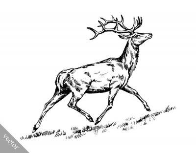 Väggdekor borstar målning bläck dra vektor hjort illustration