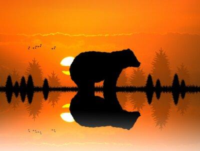 Väggdekor brun i skogen vid solnedgången