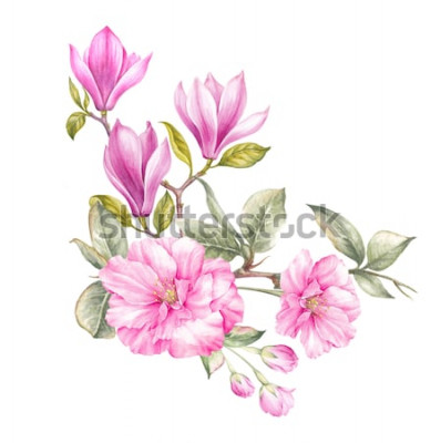 Väggdekor Bukett av magnolia. Inbjudningskort för bröllop, födelsedag och annan semester- och sommarbakgrund. Botanisk illustration.