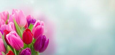Väggdekor bukett rosa och lila tulpanblommor