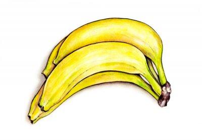 Väggdekor Bunch bananer isolerade på vit bakgrund. akvarell illustration