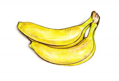 Väggdekor Bunch bananer isolerade på vit bakgrund. Vattenfärgillustration. tropiska frukter