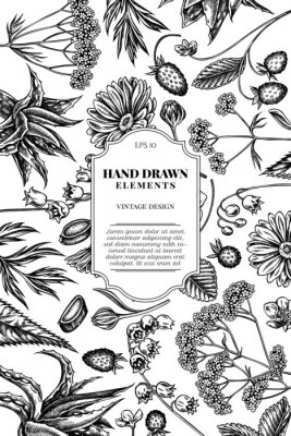 Väggdekor Card design with black and white aloe, calendula, lily of the valley, nettle, strawberry, valerian