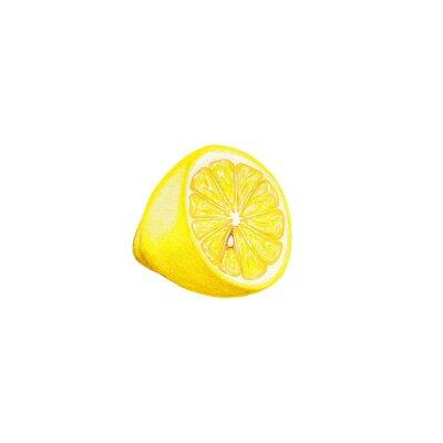 Väggdekor citron art