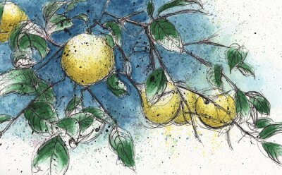 Väggdekor Citron trädgren
