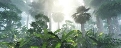 Väggdekor coconut jungle in the morning in the fog, forest in the haze. 3d rendering.