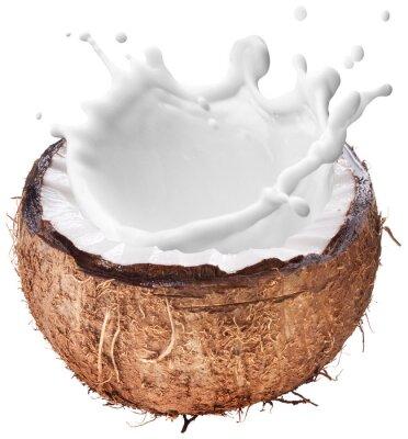 Väggdekor Coconut med mjölk stänk inuti.