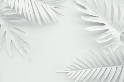 Väggdekor Collection of tropical leaves,foliage plant in white color with space background.Abstract leaf decoration design.Exotic nature art