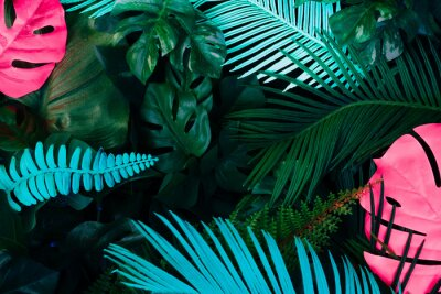 Väggdekor Creative fluorescent color layout made of tropical leaves. Flat lay neon colors. Nature concept.