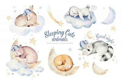 Väggdekor Cute dreaming cartoon animal deer, bear hand drawn watercolor illustration. Sleeping rabbit charecher kids nursery wear fashion design, baby cartoon and fox
