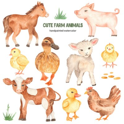 Väggdekor Cute farm animals horse, pig, lamb, calf, duck, duckling, watercolor chick